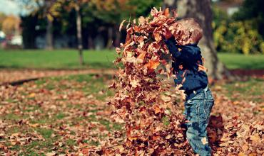 A child throwing a pile of fall leaves